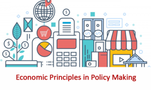 Economic Principle in Policy Making